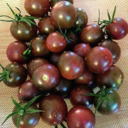kirsstomat-brown-cherry