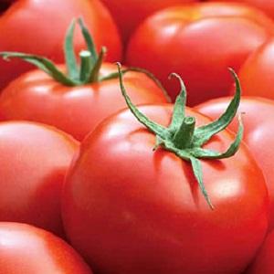 tomat-malle